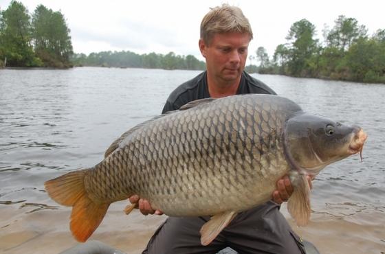 kapr 20,30 kg