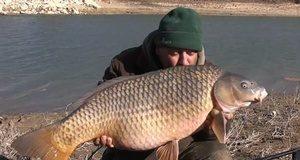 Zimní kaprařina na řece Ebro (video)