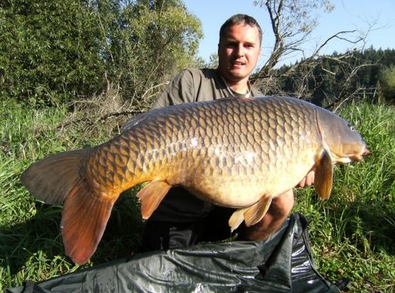 22 kg