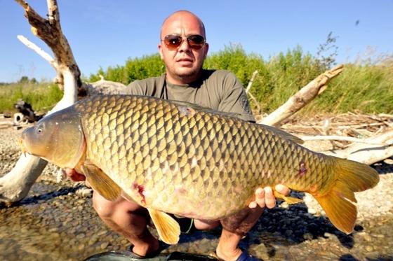 Pavel - 12,5 kg