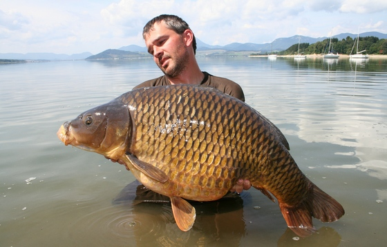 Jedna z úžasných ryb z Liptovské Mary