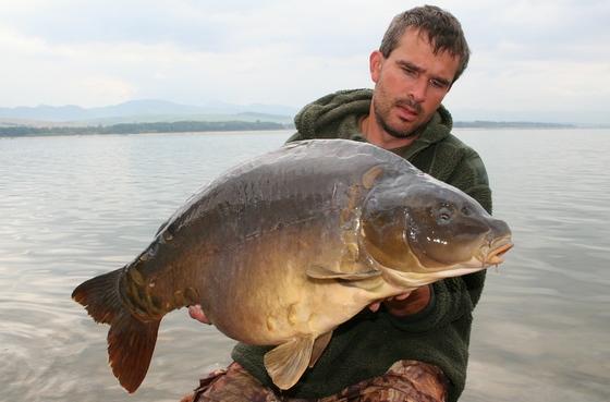 Další nádherná ryba