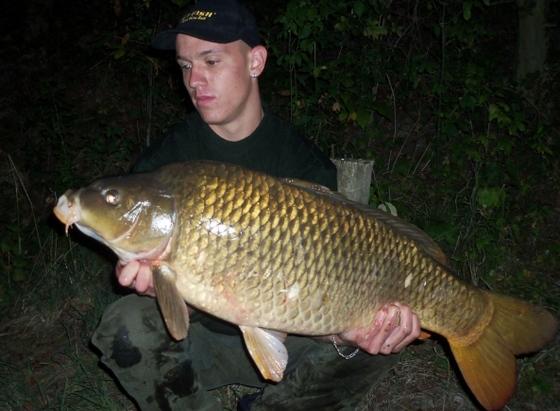 Viktor - 14,5 kg