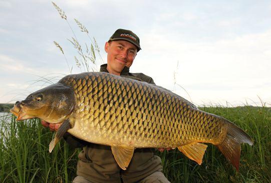 14 kg krasavec