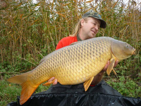 16,23 kg a další body pro D5