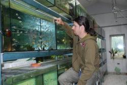 Některé své novinky zkouším prvně na akvarijních rybách...