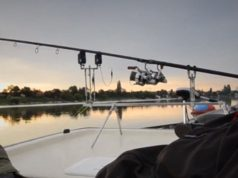 Video: Metropolis Carp (trailer DVD)