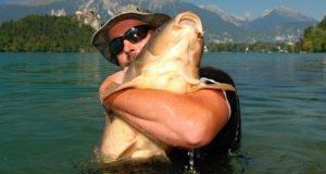 Lázeňské jezero Bled