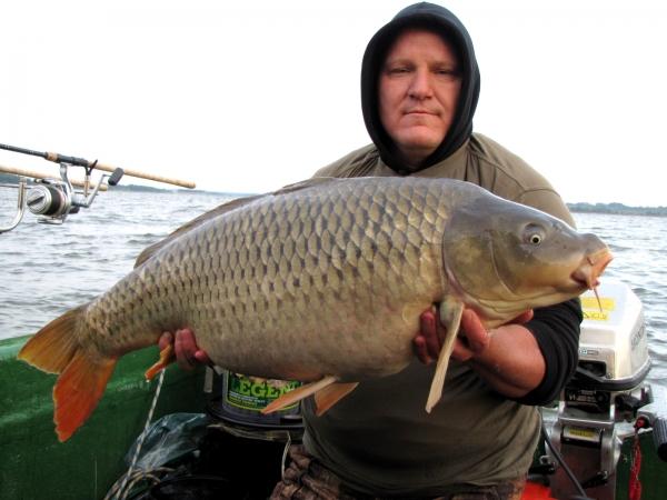Marcel - 17 kg