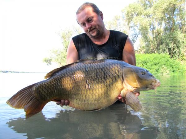 17,40 kg