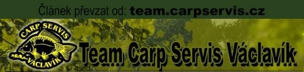Carpservis