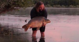 Video: Letní lov kaprů ve Francii