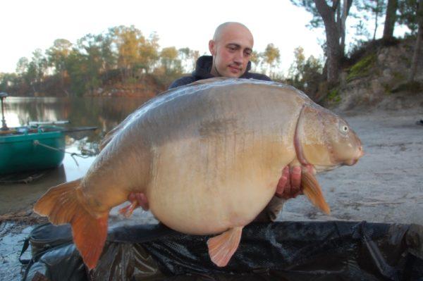25,80 kg