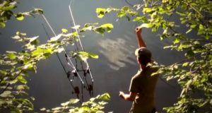 Video: CT Prčice CARP TOUR