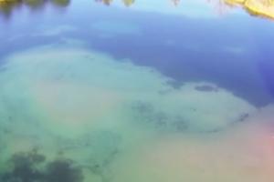 Video: Krátkodobé vycházky Martina Teplana k vodě