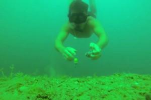 Video: My Carp Fishing od Petera Hofierky
