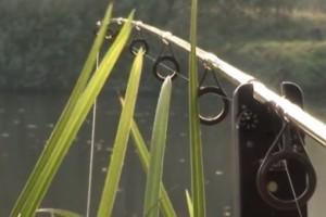 Video: Říční lov kaprů s Mírou Kratěnou