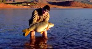 Video: Lov kaprů na jezeře Bin El Quidane v Maroku