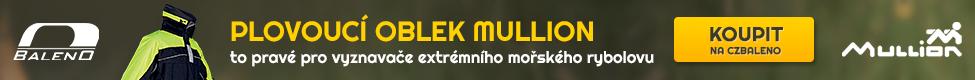 Mullion CZ Baleno
