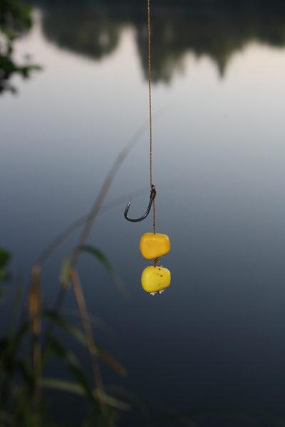 Plastická zrna kukuřice jsou vynikající nástrahou pro lov method taktikou
