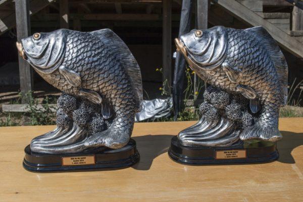 Poháry pro vítěze sektorů