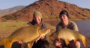 Video: Bin El Ouidane Marocco Carp Fishing
