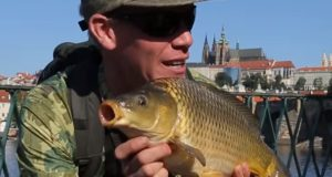 Video: Nash 2016 Carp Fishing DVD + Eurobanx 2 (české titulky)