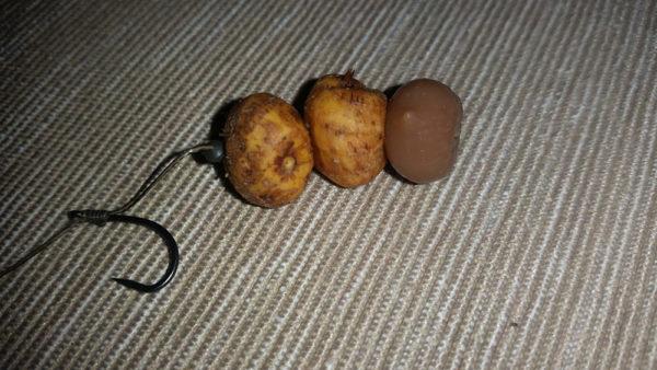Nastražení tygřího ořechu s umělým plovoucím ořechem