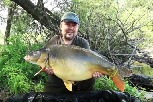Video: JET FISH DVD 2017
