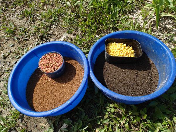 1kg ostrého krmení, 2 kg hlíny, kukuřice a masní červi nám vystačí na celé odpoledne