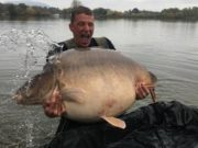 Video: Padl nový světový rekord kapra! Lysec o váze 49 kg byl chycen na jezeře Euro-Aqua