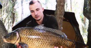 Video: Po stopách kaprů - Wild Fishing