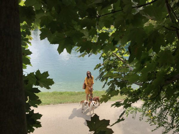 Cestou na hrad Bled