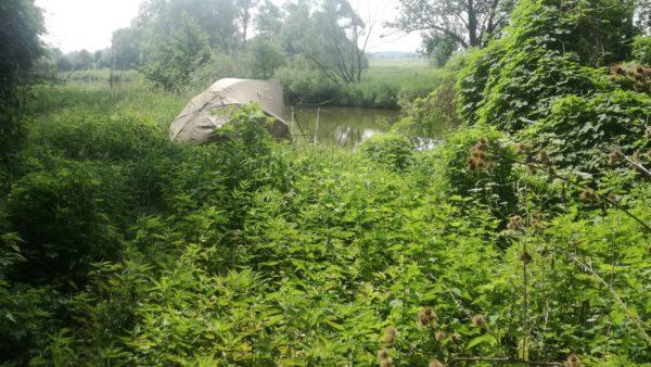 Ke klenotům malých řek se musíte dostat přes kopřivy a bodláky