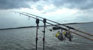 Video: Tvrdá realita na Lac du Der