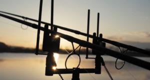 Video: Zemník Bodovka - zimní lov kaprů 2020
