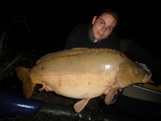 lysec 16,5 kg